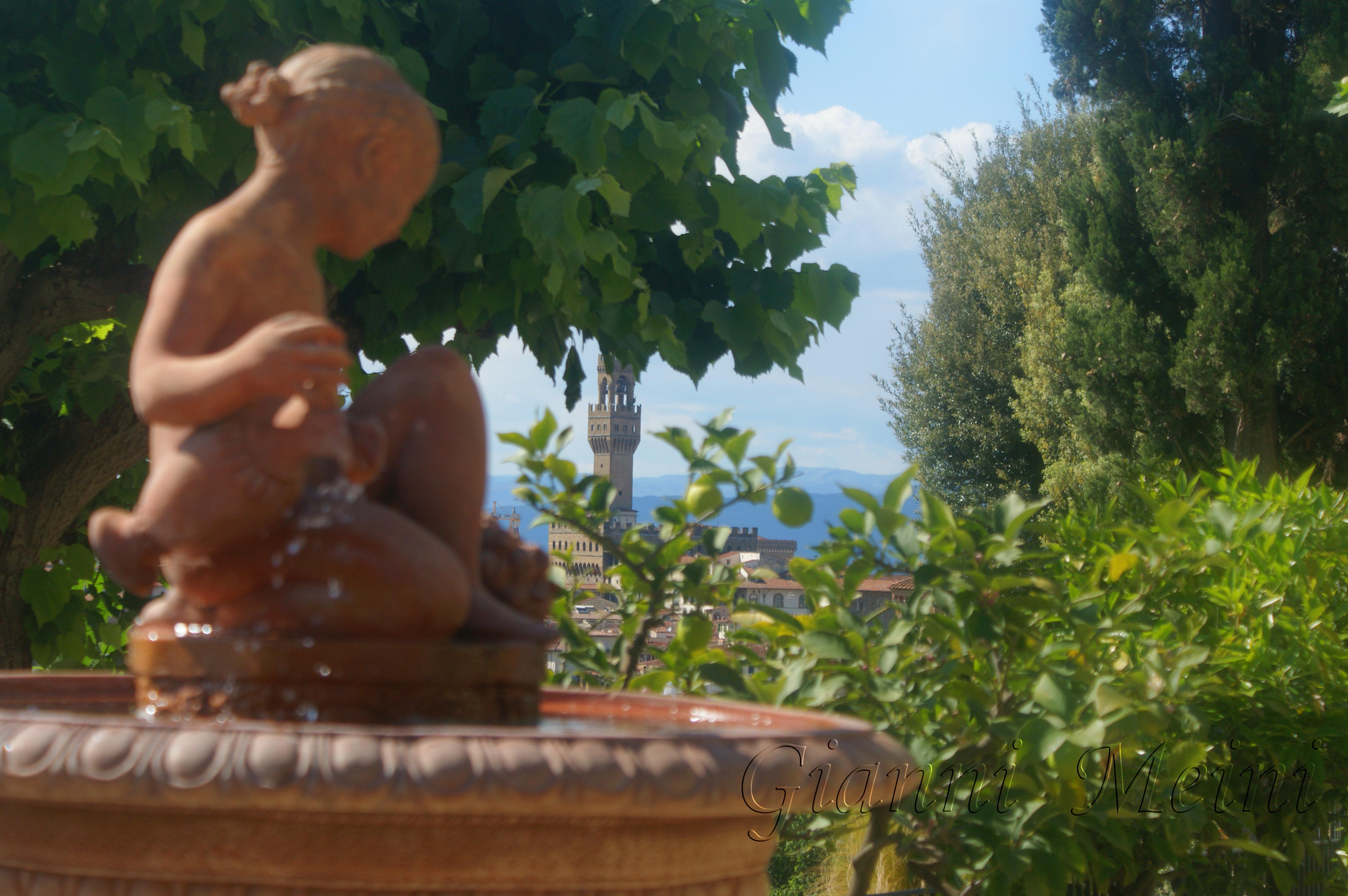 Il giardino delle rose 2012 firenzefoto - Il giardino delle rose ...